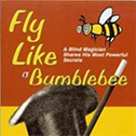 Fly Like A Bumblebee the book